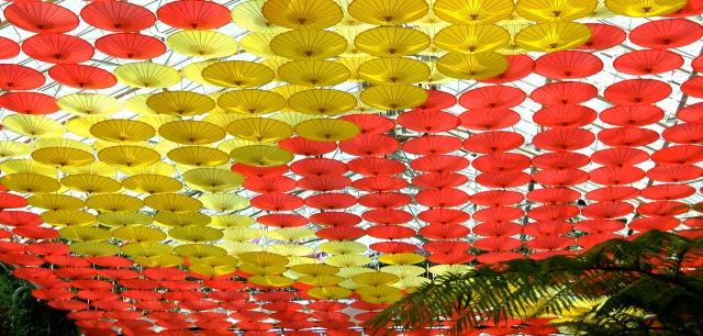 Parasols, 2011