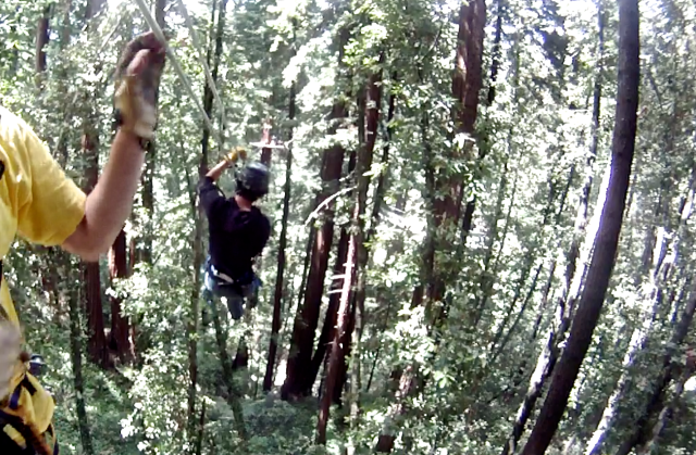 8. My Grandson Ziplining, video still, Mount Hermon, California, June 2012;