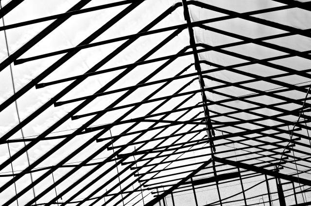 3. Interior Roof of Greenhouse, UD Botanical Gardens, Nikon DSLR, October 2012; © Sally W. Donatello and Lens and Pens by Sally, 2012