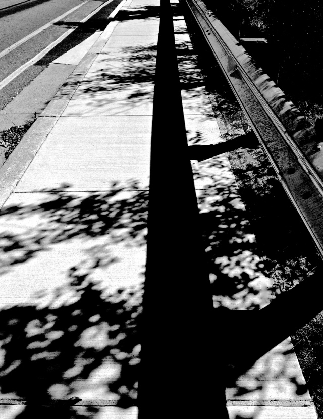 4. Shadows on Sidewalk, iPhone 4s, October 2012;
