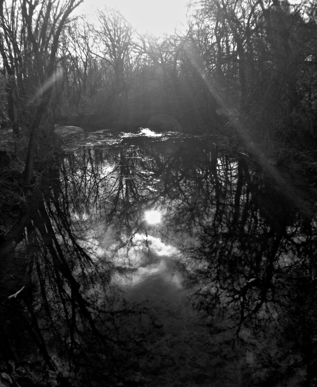 14. The Creek, iPhone 4s, December 2012; © Sally W. Donatello and Lens and Pens by Sally, 2012