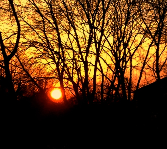 3. Sunset, iPhone 4s, November 2012; © Sally W. Donatello and Lens and Pens by Sally, 2012