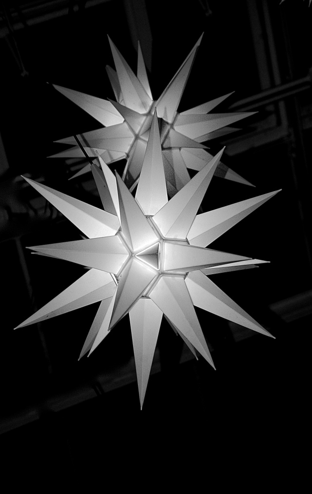 4.Close Up of Indoor Stars, Longwood Gardens, Nikon DSLR, December 2012; © Sally W. Donatello and Lens and Pens by Sally, 2012