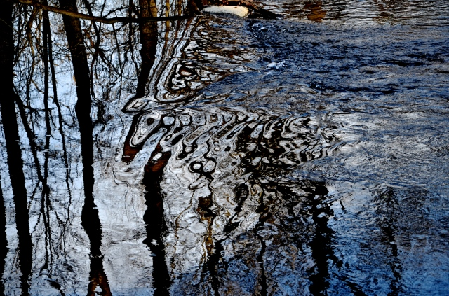 2. Reflections, Nikon DSLR, December 2012; © Sally W. Donatello and Lens and Pens