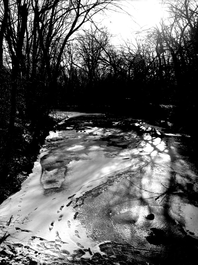 2. White Clay Creek, iPhone 4s, January 2013; © Sally W. Donatello and Lens and Pens by Sally, 2013