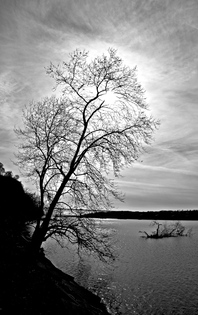 1. Susquehanna River, Nikon DSLR, January 2013; © Sally W. Donatello and Lens and Pens by Sally, 2013