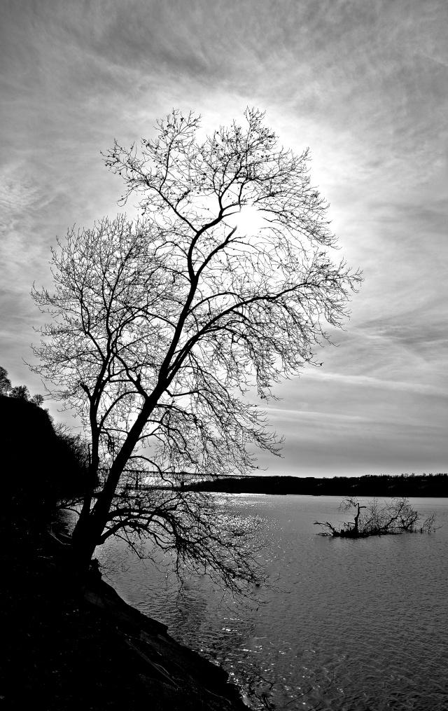 1. Susquehanna River, Nikon DSLR, January 2013; © Sally W. Donatello and Lens and Pens by Sally, 2013