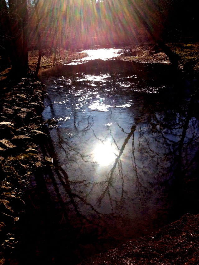 2. Sun on the Red Clay Creek, iPhone 4s, January, 2013; © Sally W. Donatello and Lens and Pens by Sally, 2013