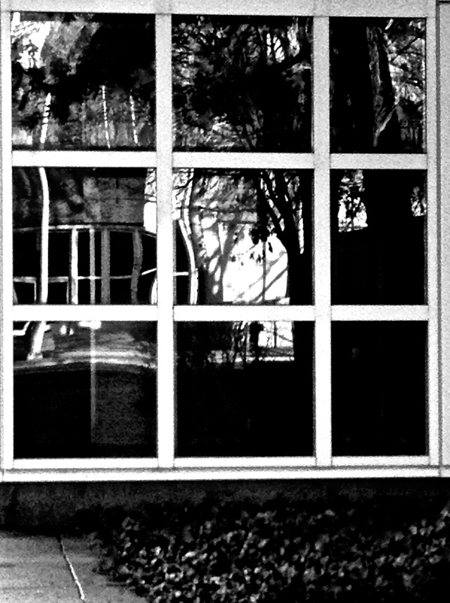 1. Reflections through Windows, iPhone 4s, January 2013; © Sally W. Donatello and Lens and Pens by Sally, 2013