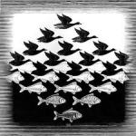"""Sky and Water,"" M.C. Escher, 1938, Google Images"