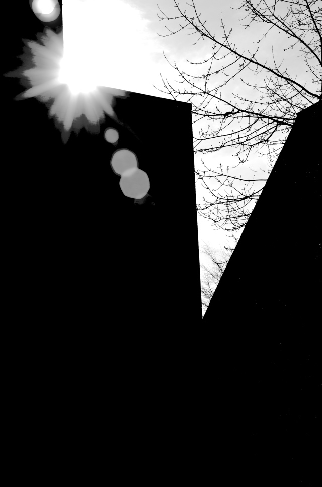 Afternoon Sun Rays Kissing a Building, Nikon DSLR, January 2013; © Sally W. Donatello and Lens and Pens by Sally, 2013