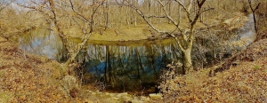 2. Panorama of White Clay Creek, iPhone 4s, March 2013; © Sally W. Donatello and Lens and Pens by Sally, 2013