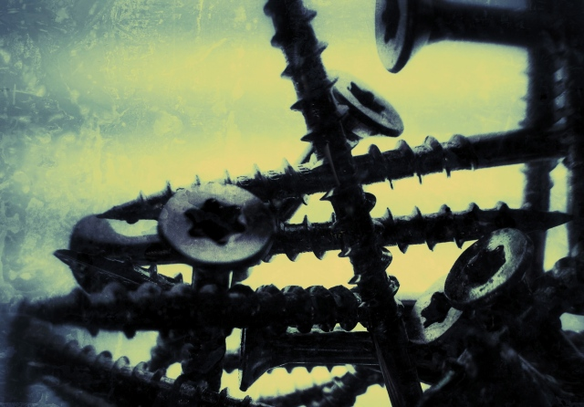 """3. Black Screws, 1 ¼"""",  iPhone 4s, March 2013;© Sally W. Donatello and Lens and Pens by Sally, 2013"""