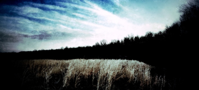2. Landscape, iPhone 4s, March, 2013; © Sally W. Donatello and Lens and Pens by Sally, 2013