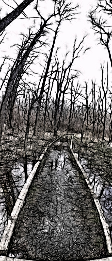 1. White Clay Creek, iPhone 4s, April 2013; © Sally W. Donatello and Lens and Pens by Sally, 2013