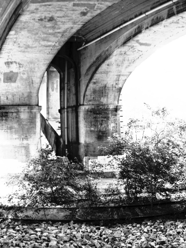 1. Bridge over Brandywine River, iPhone 4s, June 2013; © Sally W. Donatello and Lens and Pens by Sally, 2013