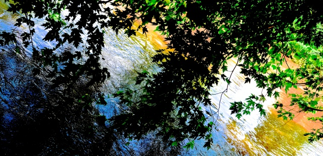2. Brandywine Creek, Nikon DSLR, June 2013; © Sally W. Donatello and Lens and Pens by Sally, 2013