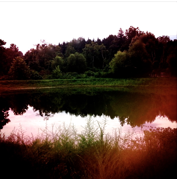 2. Reflections in the Park, iPhone 4s, August 2013; © Sally W. Donatello and Lens and Pens by Sally, 2013