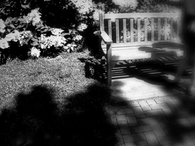 2. Bench and Shadows, Longwood Gardens, iPhone 4s, July 2013; © Sally W. Donatello and Lens and Pens by Sally, 2013
