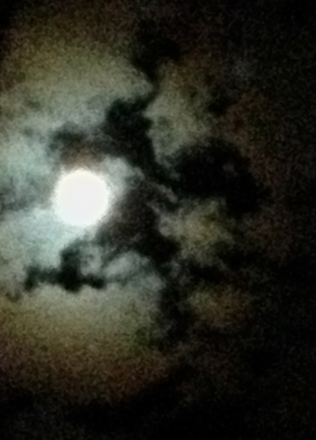 2. Moonlight, iPhone 4s, December 2013; © Sally W. Donatello and Lens and Pens by Sally, 2013