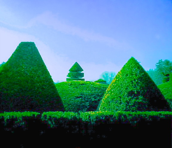 Topiary, Longwood Gardens, iPhone 4s, December 2013; © Sally W. Donatello and Lens and Pens by Sally, 2013