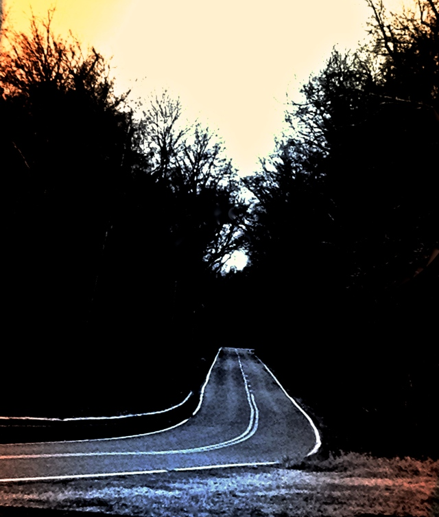 1. The Path to Somewhere, iPhone 4s, December 2013; © Sally W. Donatello and Lens and Pens by Sally, 2014