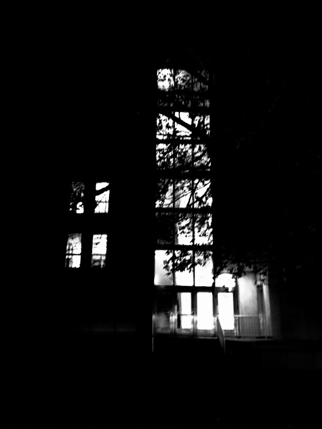 Windows, UD Morris Library, iPhone 4s, November 2013; © Sally W. Donatello and Lens and Pens by Sally, 2014