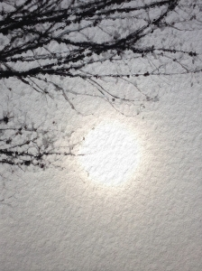3. Afternoon Sky and sun, iPhone 4s, February 2014; © Sally W. Donatello and Lens and Pens by Sally, 2014