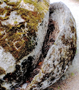 4. Split Granite Boulder, Hirschman Diggins, Nevada City, California, iPhone 4s, April 2014; © Sally W. Donatello and Lens and Pens by Sally, 2014