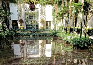 1. Reflections, Chrysanthemum Festival,, Longwood Gardens; Copyright © 2014 Sally W. Donatello All Rights Reserved/Lens and Pens by Sally