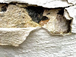 1. Weathered Wall; Copyright © 2014 Sally W. Donatello All Rights Reserved/Lens and Pens by Sally