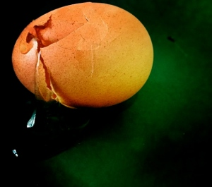 2. Yolk of Brown Egg; Copyright © 2015 Sally W. Donatello All Rights Reserved/Lens and Pens by Sally