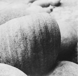 1. Monochrome Series: Still Life in Stone; Copyright © 2015 Sally W. Donatello All Rights Reserved