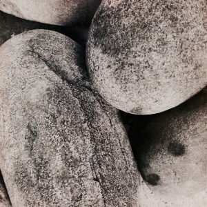 2. Monochrome Series: Still Life in Stone; Copyright © 2015 Sally W. Donatello All Rights Reserved
