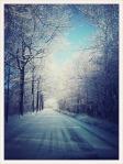 """""""Winter Wonderland,"""" Robert-Paul Jansen"""