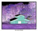 The Barn Negative Inverted Effect by Rose Santuci-Sofranko