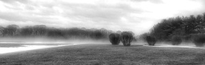 2. Foggy Afternoon; Copyright © 2016 Sally W. Donatello All Rights Reserved