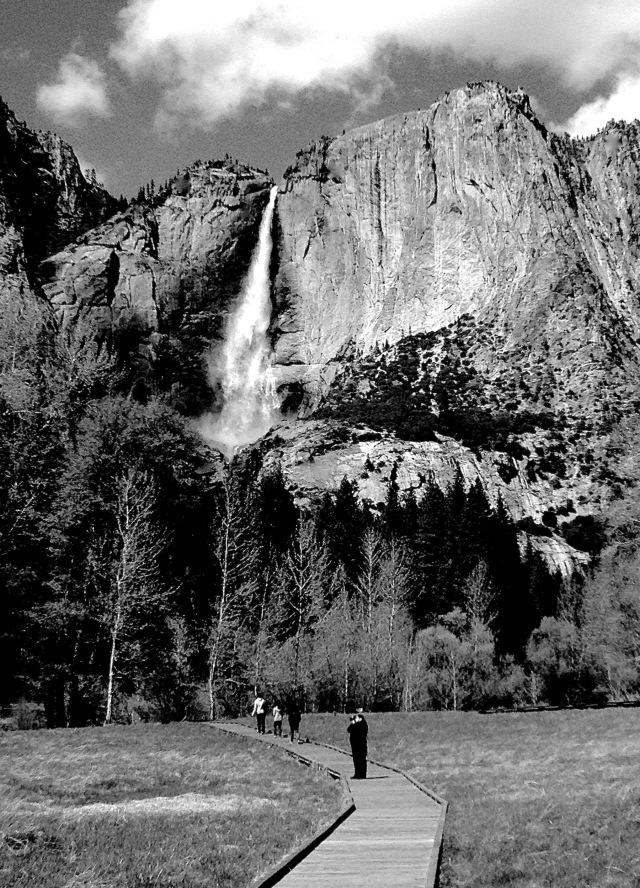 Yosemite Falls, Yosemite National Park; Copyright © 2014 Sally W. Donatello All Rights Reserved