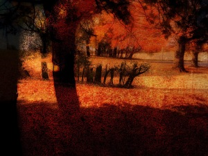 1. Autumnal Scenario Photomontage; Copyright © 2016 Sally W. Donatello All Rights Reserved