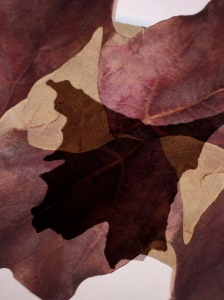 2. Autumn Leaves Photomontage; Copyright © 2016 Sally W. Donatello All Rights Reserved